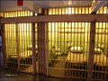 Alcatraz_prison_cell